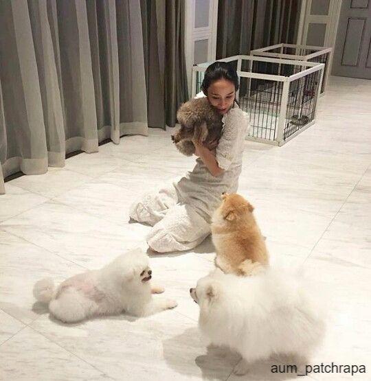 อั้ม พัชราภา ไชยเชืื้อ กับสุนัข