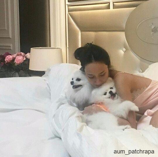 อั้ม พัชราภา ไชยเชืื้อ กับสุนัขบนเตียงนอน