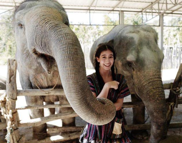 มิ้นต์ ชาลิดา กับ ช้าง