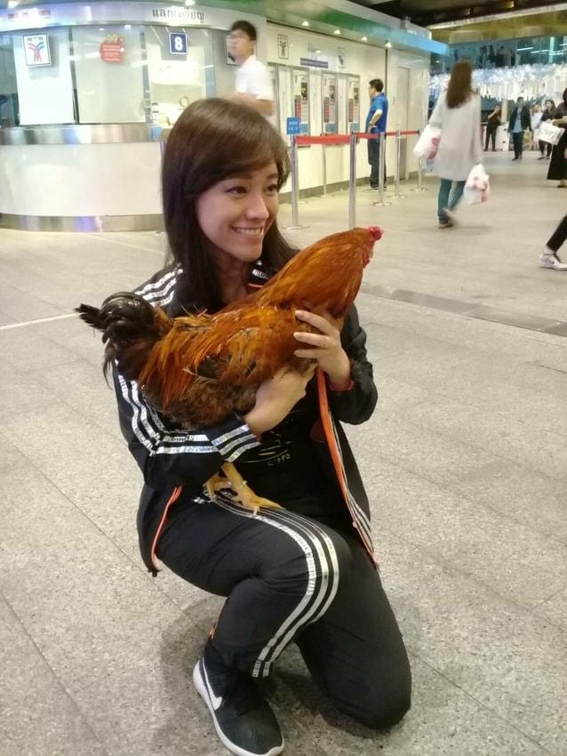ชาลีน่า ผู้ประกาศข่าวชาวฮ่องกง กับ ไอ้จ๊อก