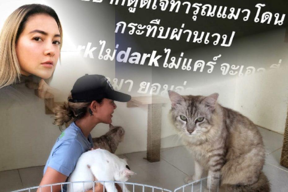 """โย ยศวดี เดือด """"แมวต้องไม่ตายฟรี"""" เหตุดีเจ dark web โหดทุบแมวแลกบิตคอยน์"""