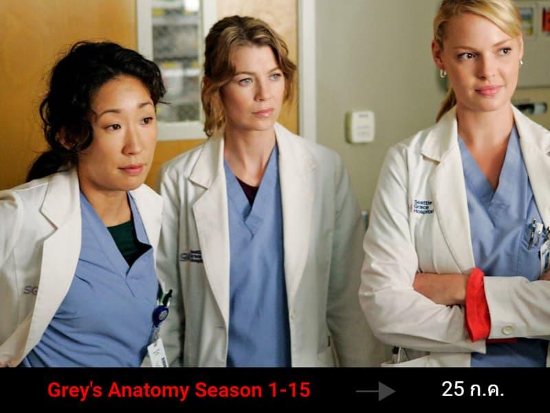 Grey's Anatomy Season 1-15 ซีรีส์ เกรย์อะนาโตมี แพทยมือใหม่ หัวใจเกินร้อย