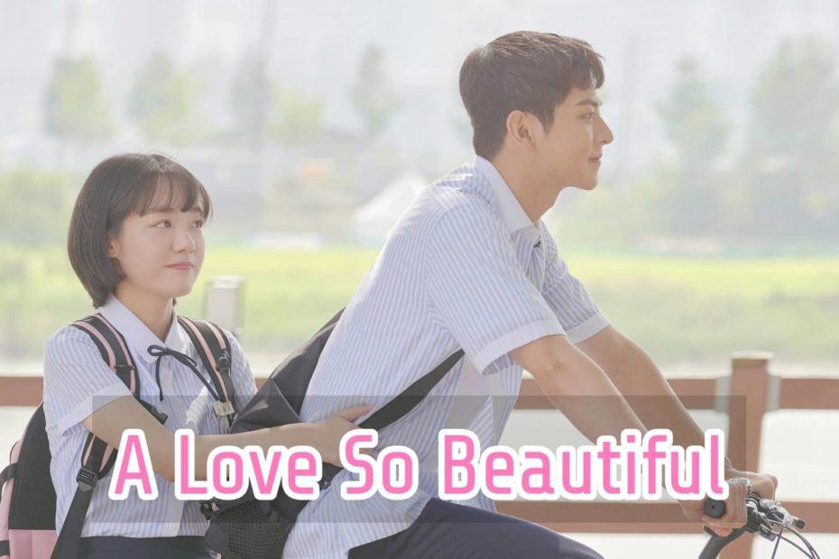 เรื่องย่อซีรีส์ A Love So Beautiful (2020) นับแต่นั้น ... ฉันรักเธอ
