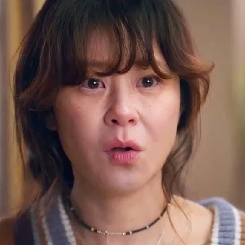 พันฮานี รับบทโดย ชเวคังฮี