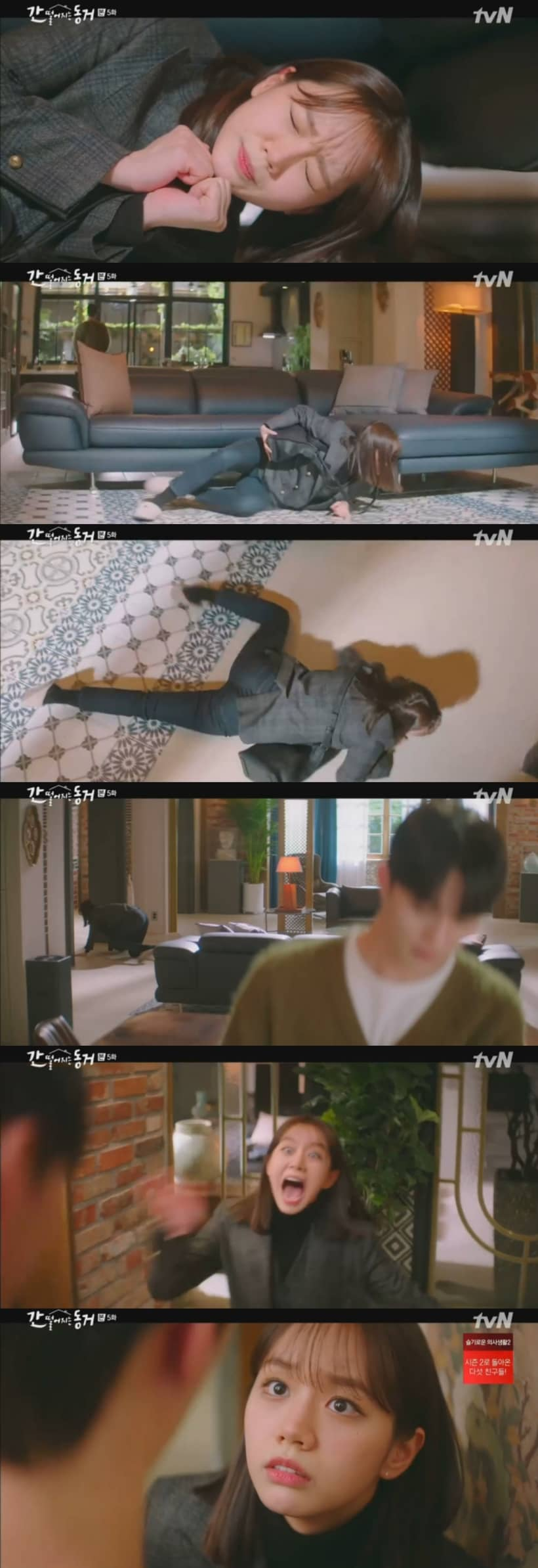 My Roommate is a Gumiho EP.5